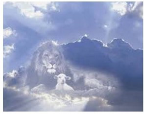 lion-d